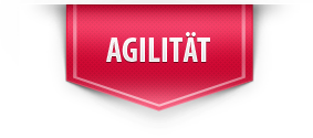 box-agilitaet